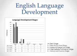 Findings slide English stages